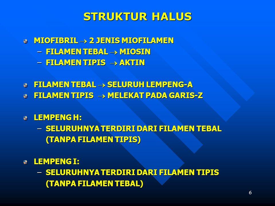 STRUKTUR HALUS MIOFIBRIL  2 JENIS MIOFILAMEN FILAMEN TEBAL  MIOSIN