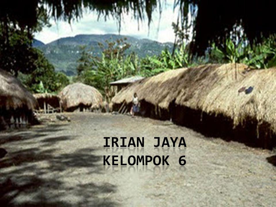 IRIAN JAYA KELOMPOK 6