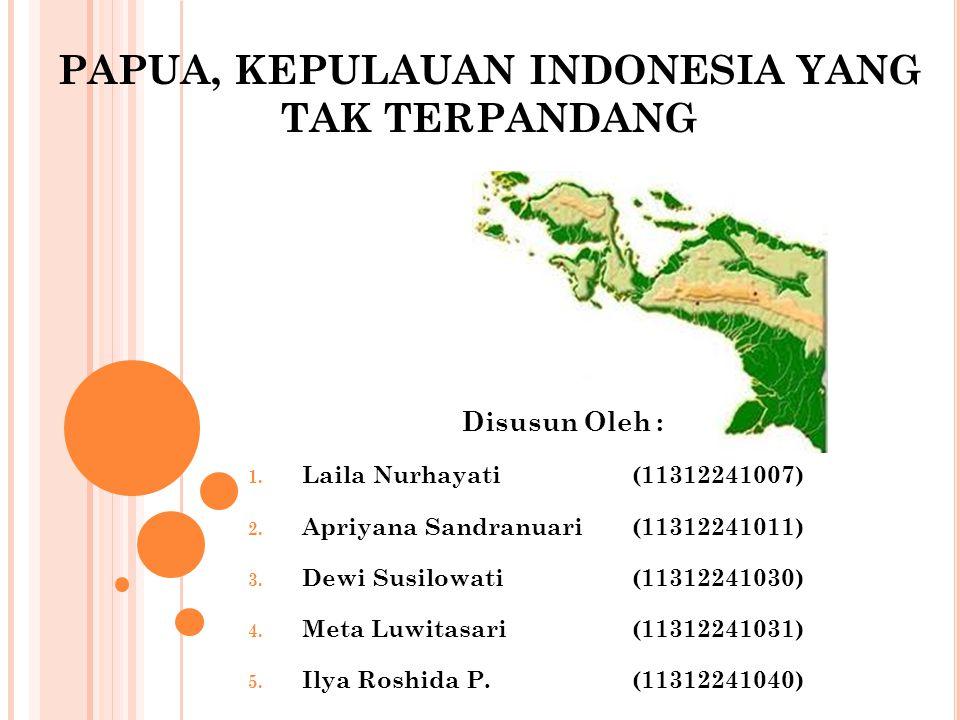 PAPUA, KEPULAUAN INDONESIA YANG TAK TERPANDANG