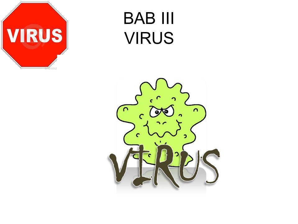 BAB III VIRUS