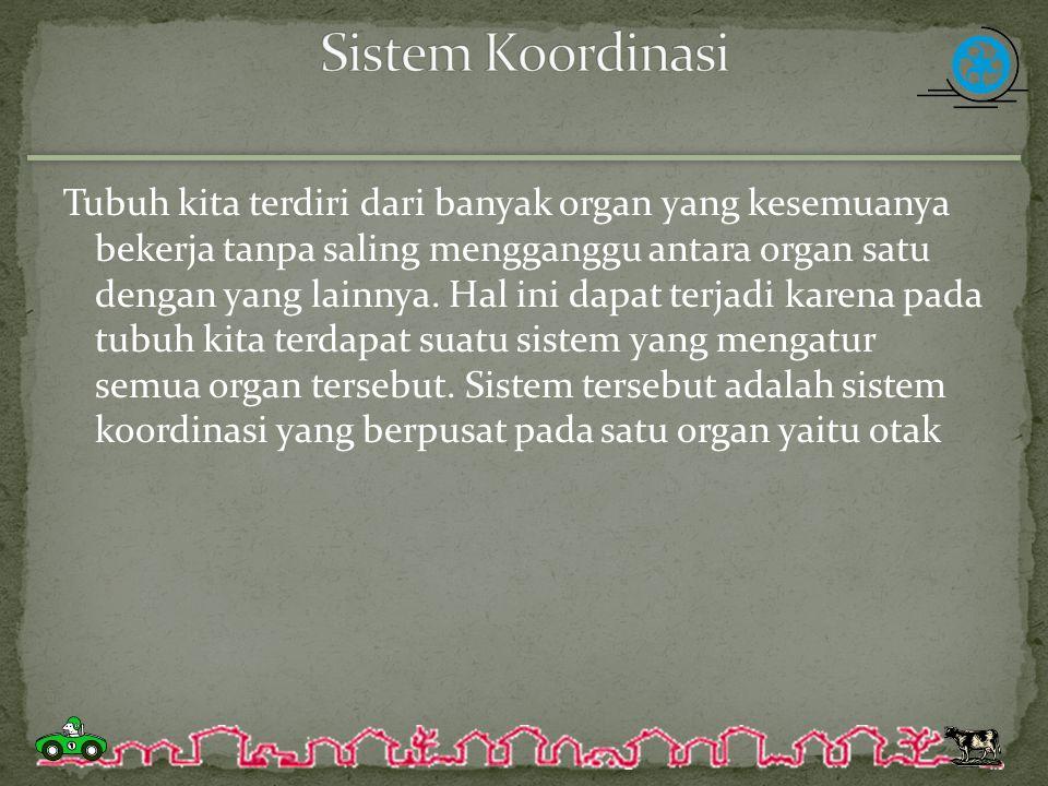 Sistem Koordinasi