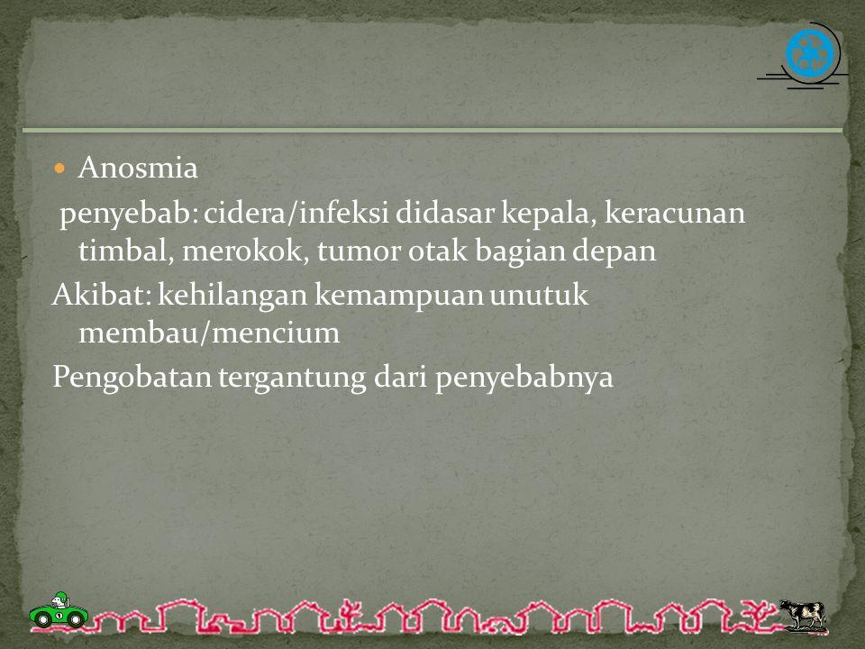 Anosmia penyebab: cidera/infeksi didasar kepala, keracunan timbal, merokok, tumor otak bagian depan.