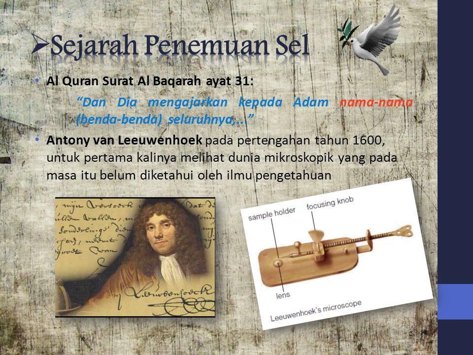 Sejarah Penemuan Sel Al Quran Surat Al Baqarah ayat 31: