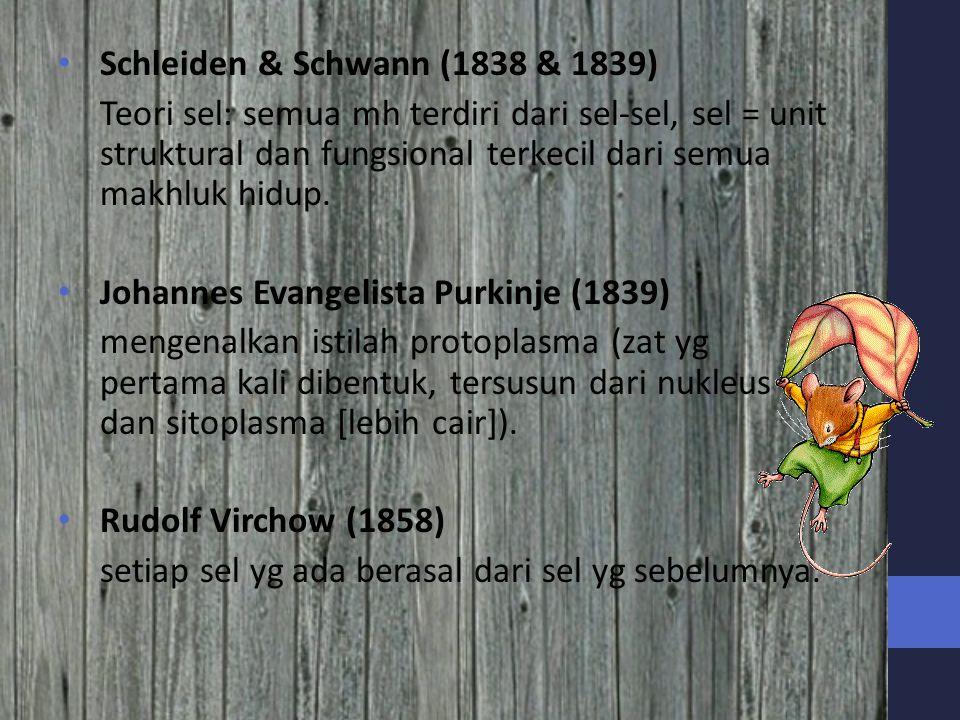Schleiden & Schwann (1838 & 1839)