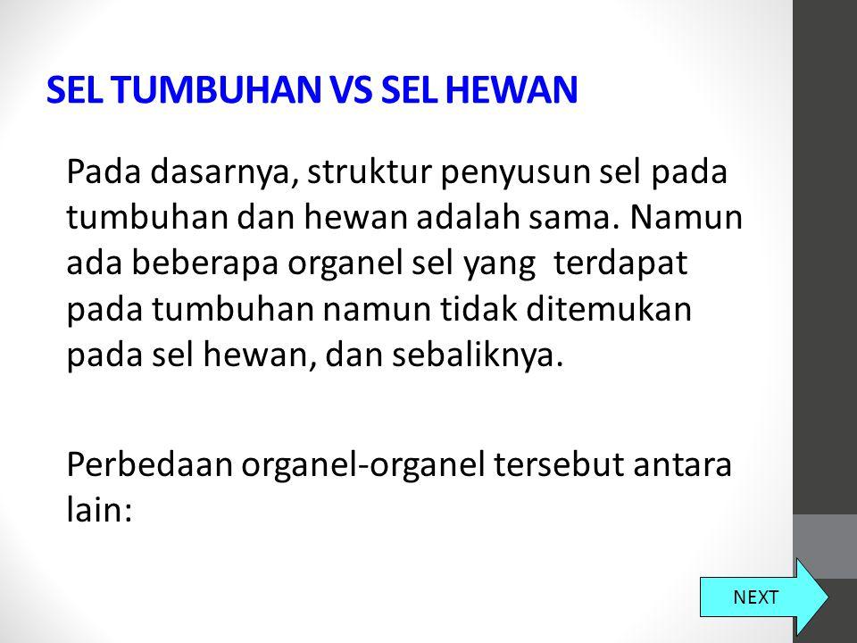 SEL TUMBUHAN VS SEL HEWAN