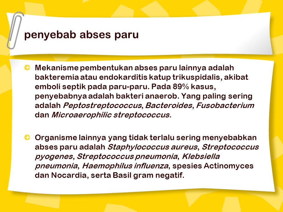 penyebab abses paru