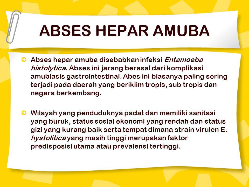 ABSES HEPAR AMUBA