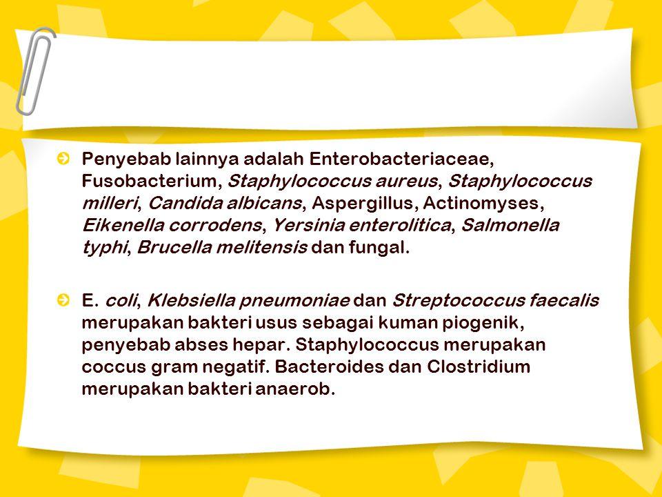Penyebab lainnya adalah Enterobacteriaceae, Fusobacterium, Staphylococcus aureus, Staphylococcus milleri, Candida albicans, Aspergillus, Actinomyses, Eikenella corrodens, Yersinia enterolitica, Salmonella typhi, Brucella melitensis dan fungal.