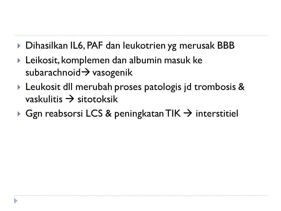 Dihasilkan IL6, PAF dan leukotrien yg merusak BBB
