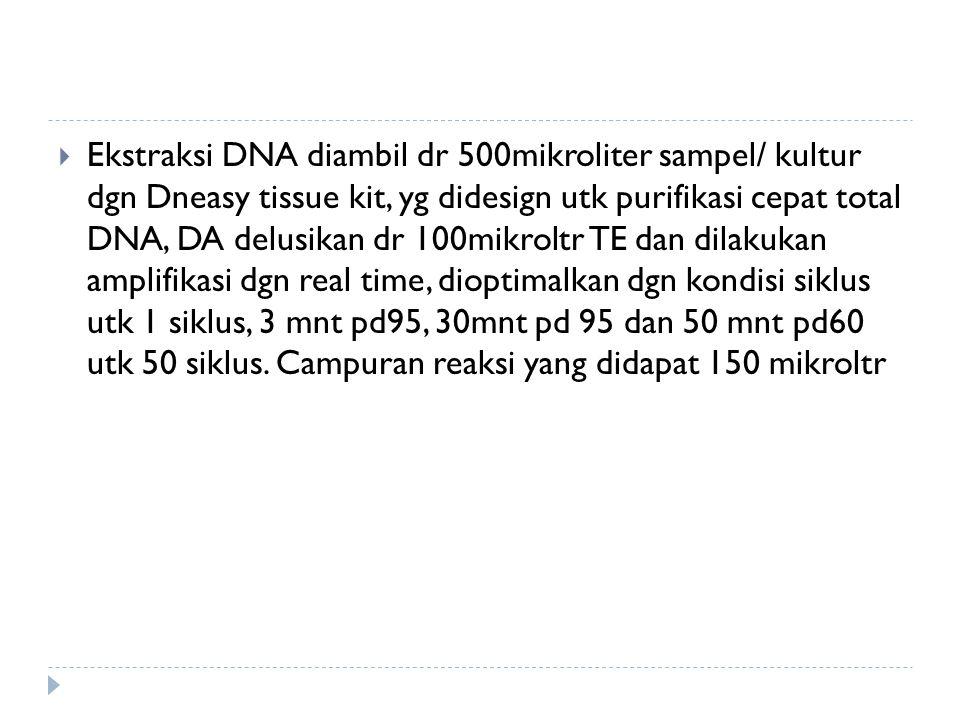 Ekstraksi DNA diambil dr 500mikroliter sampel/ kultur dgn Dneasy tissue kit, yg didesign utk purifikasi cepat total DNA, DA delusikan dr 100mikroltr TE dan dilakukan amplifikasi dgn real time, dioptimalkan dgn kondisi siklus utk 1 siklus, 3 mnt pd95, 30mnt pd 95 dan 50 mnt pd60 utk 50 siklus.