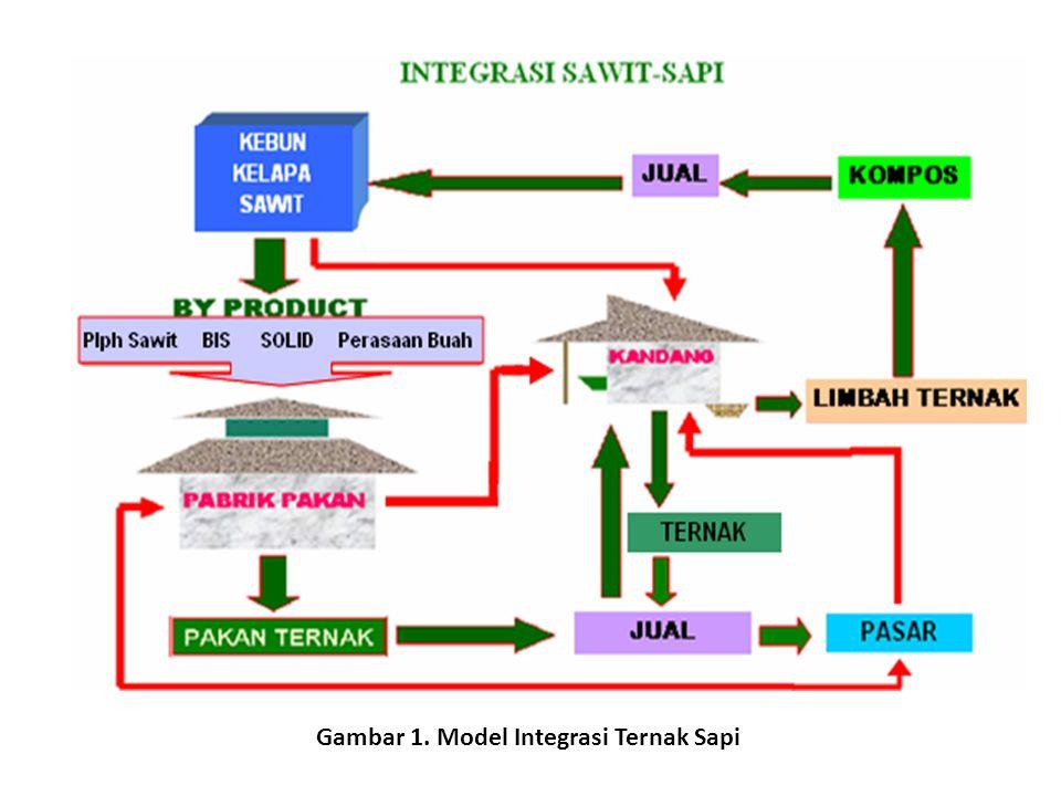 Gambar 1. Model Integrasi Ternak Sapi