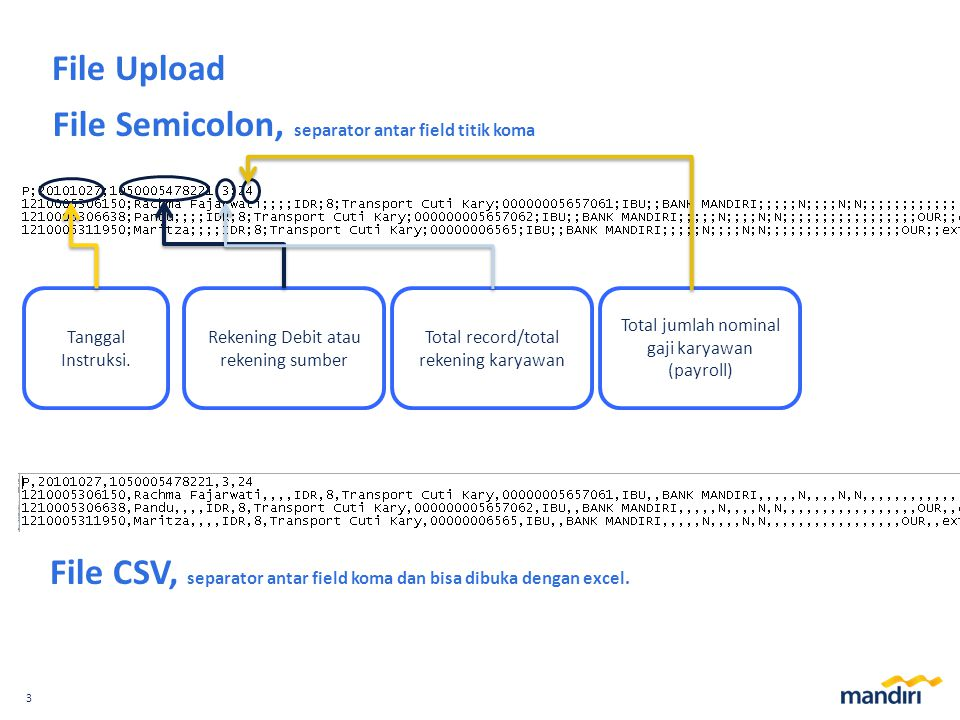File Semicolon, separator antar field titik koma