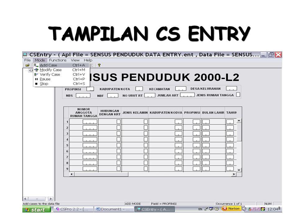 TAMPILAN CS ENTRY
