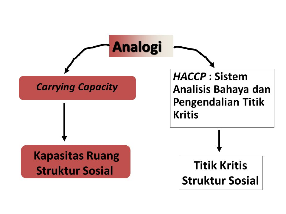 Kapasitas Ruang Struktur Sosial
