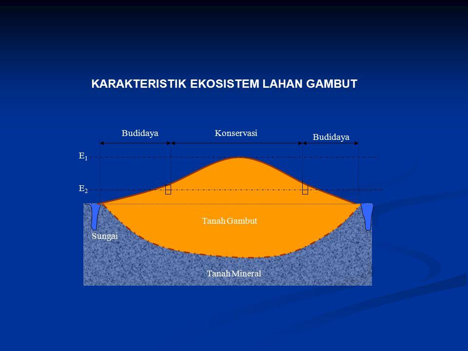 KARAKTERISTIK EKOSISTEM LAHAN GAMBUT