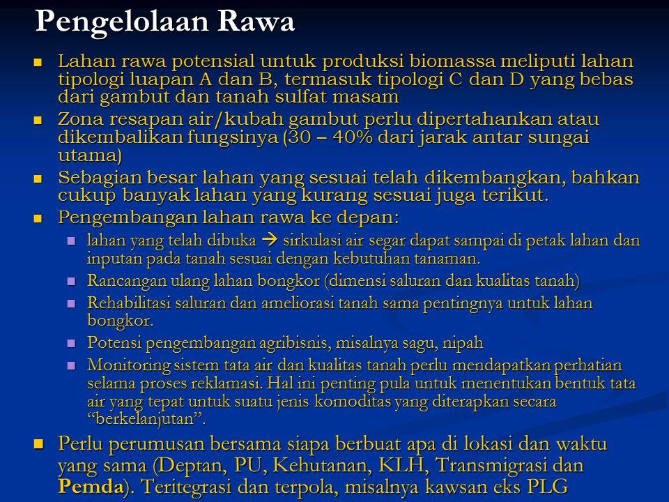 Pengelolaan Rawa