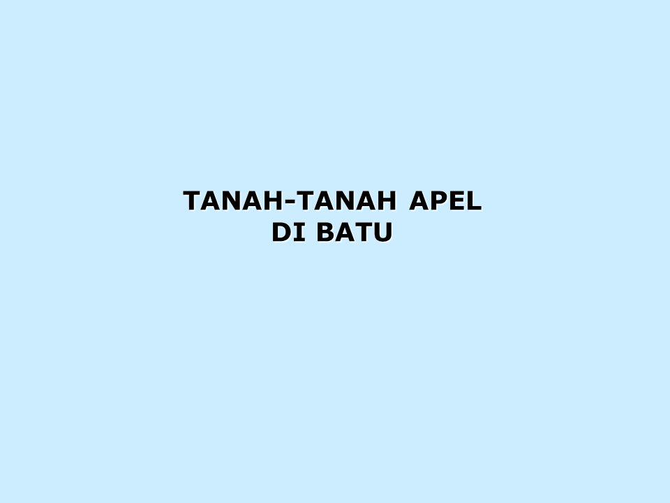 TANAH-TANAH APEL DI BATU