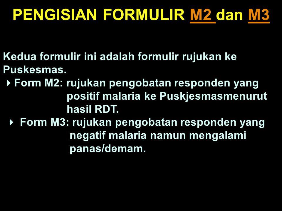 PENGISIAN FORMULIR M2 dan M3