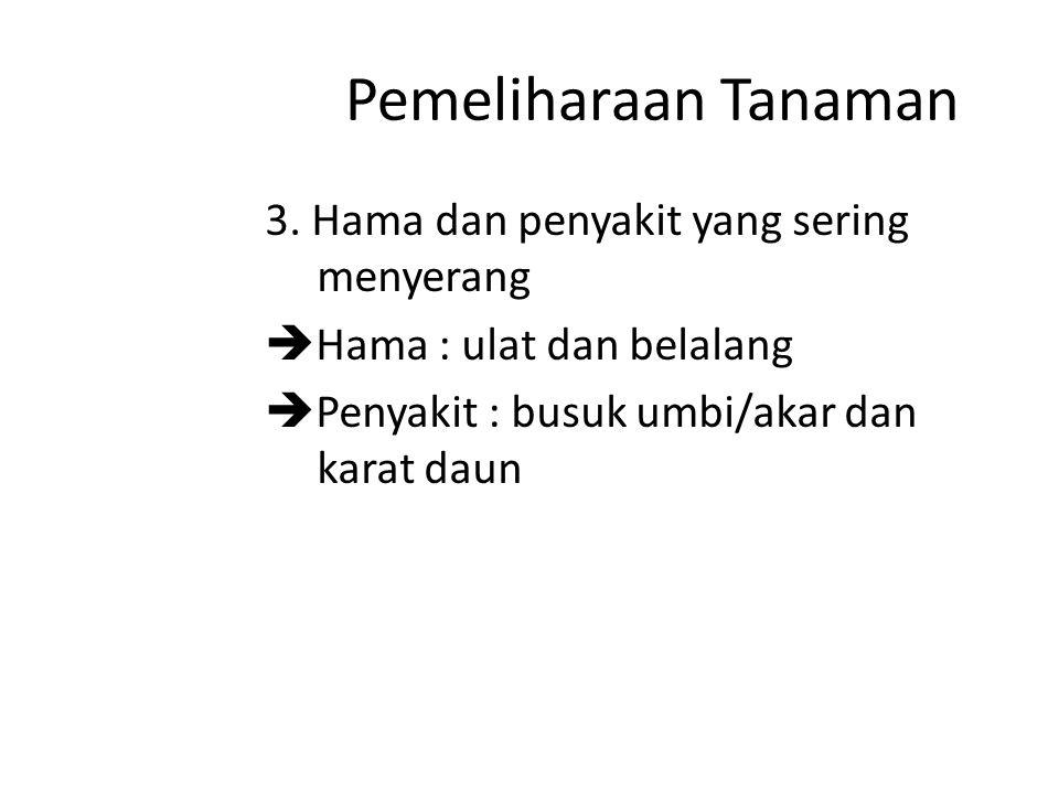 Pemeliharaan Tanaman 3.