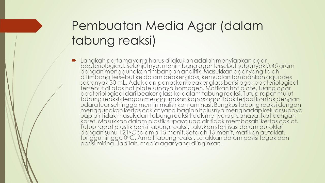 Pembuatan Media Agar (dalam tabung reaksi)