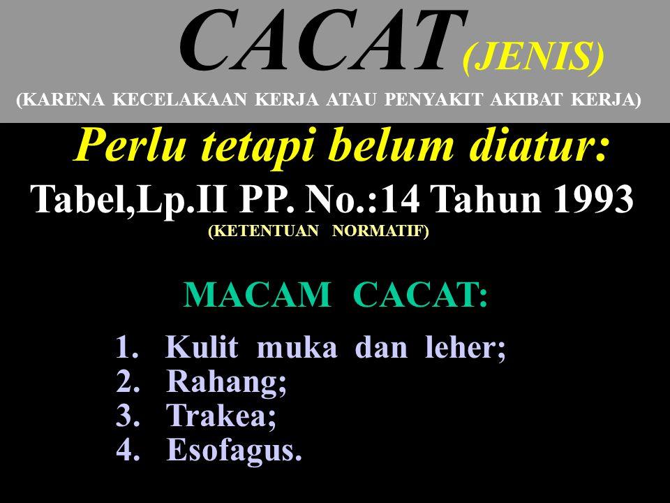 CACAT(JENIS) Perlu tetapi belum diatur: