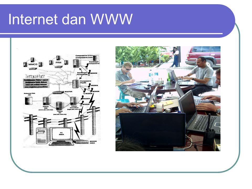Internet dan WWW Berkembang dan mulai banyak dipergunakan oleh pemerintahan dan para peneliti sejak tahun 1980, dan.