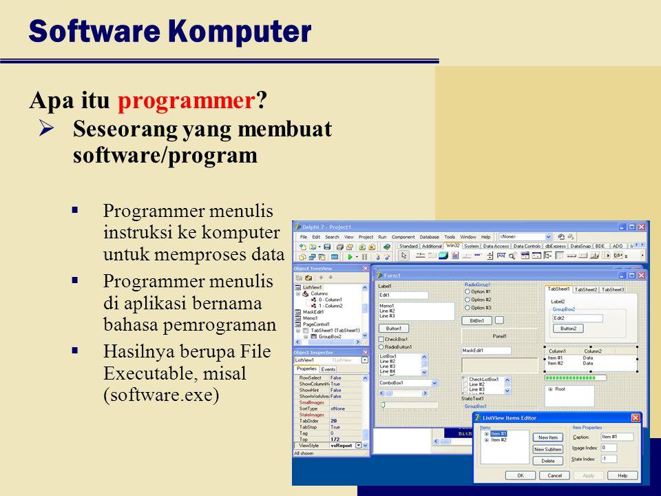 Software Komputer Apa itu programmer