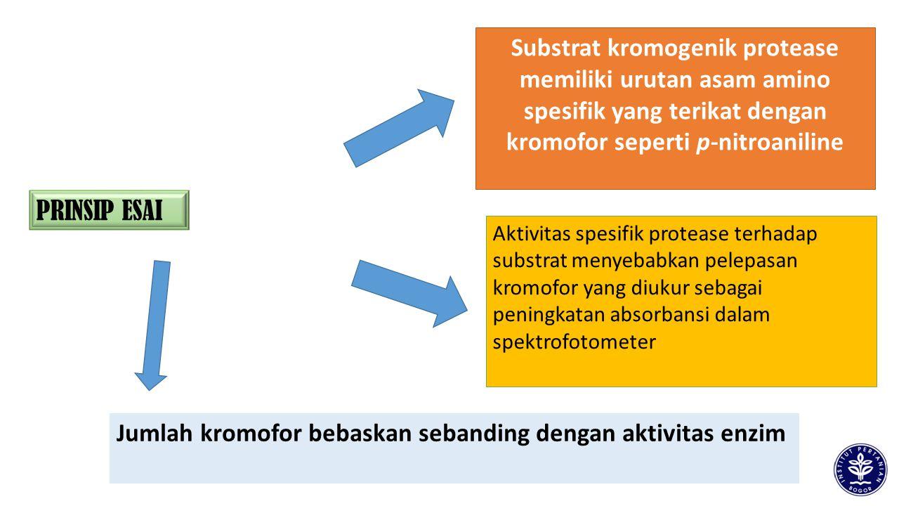 Jumlah kromofor bebaskan sebanding dengan aktivitas enzim