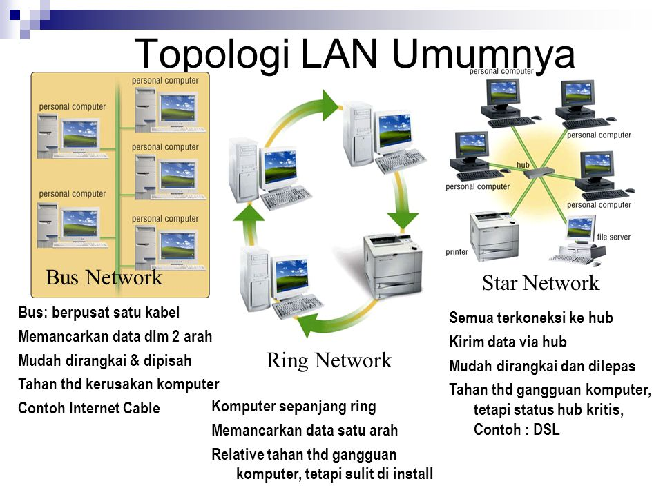 Topologi LAN Umumnya Bus Network Star Network Ring Network