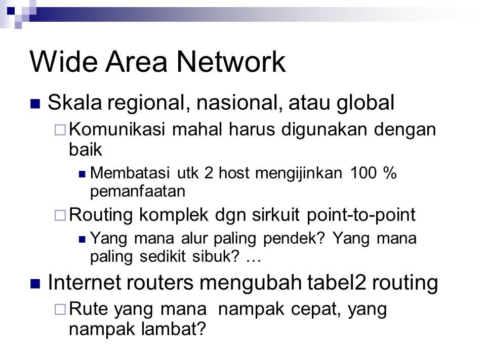 Wide Area Network Skala regional, nasional, atau global