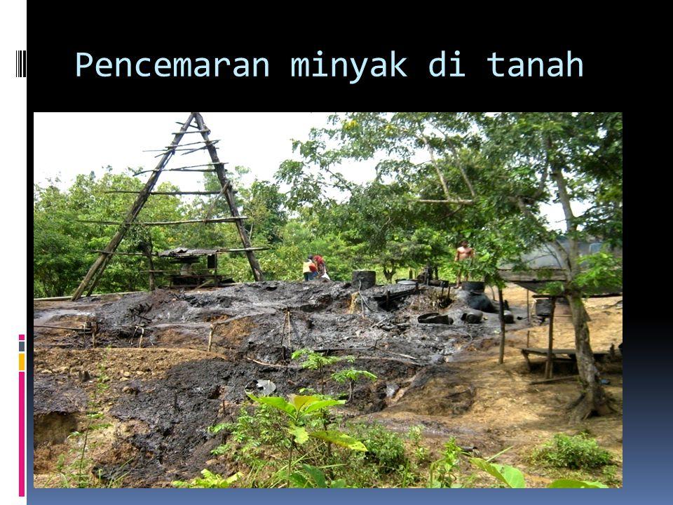Pencemaran minyak di tanah