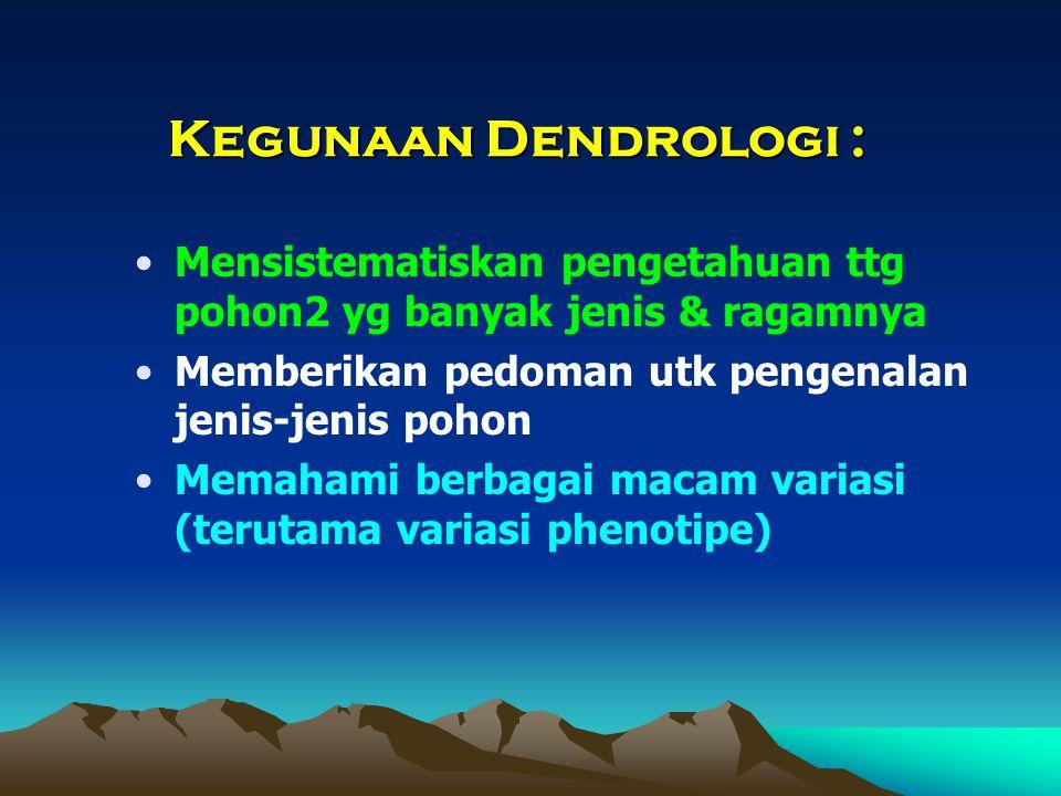 Kegunaan Dendrologi : Mensistematiskan pengetahuan ttg pohon2 yg banyak jenis & ragamnya. Memberikan pedoman utk pengenalan jenis-jenis pohon.