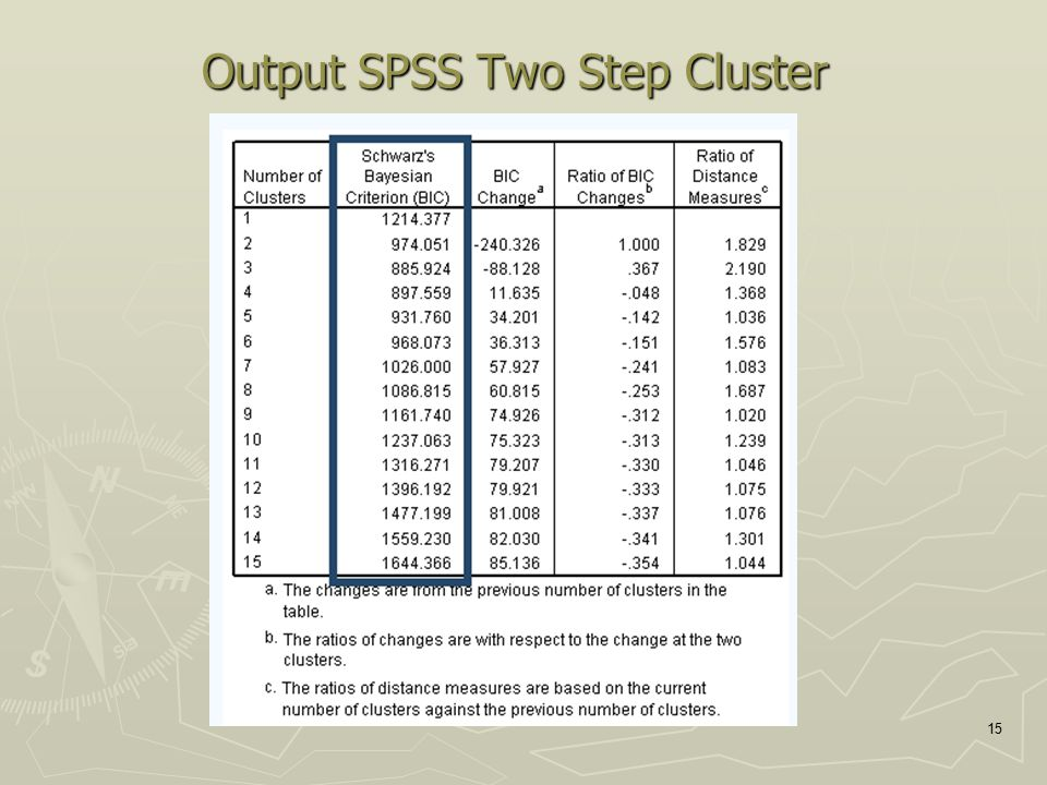 Output SPSS Two Step Cluster