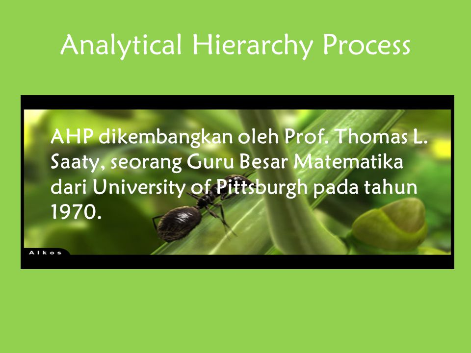 analytical hierarchy process Analytical hierarchy process (ahp): developing the analytic hierarchy process for evaluating alternative early-in-life intervention programs - title.