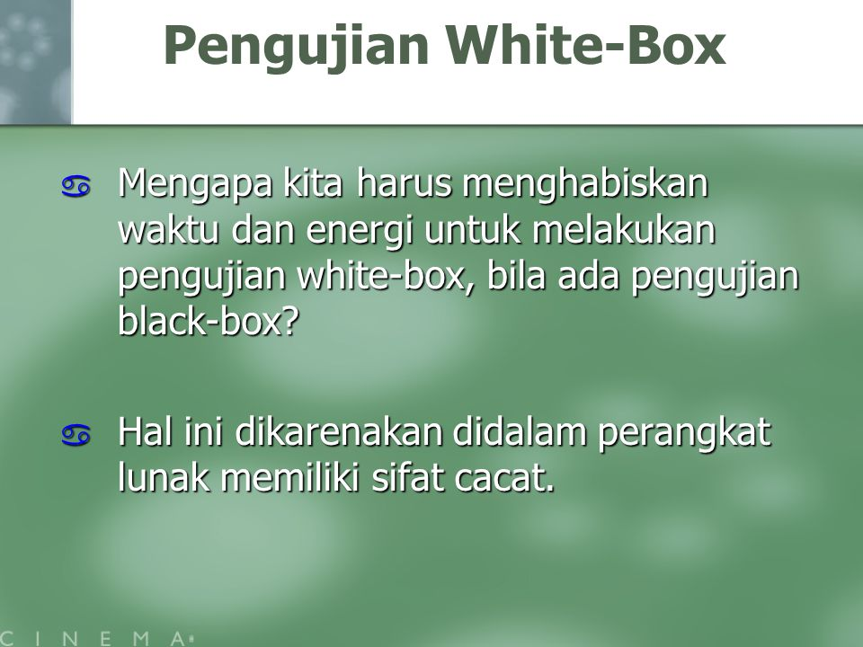 Pengujian White-Box Mengapa kita harus menghabiskan waktu dan energi untuk melakukan pengujian white-box, bila ada pengujian black-box