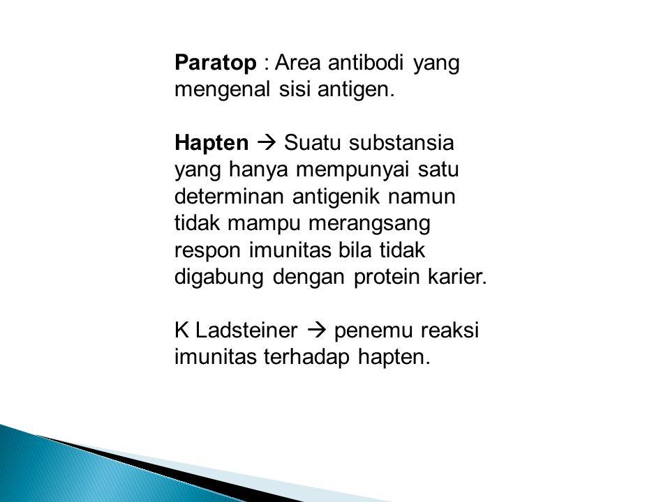 Paratop : Area antibodi yang mengenal sisi antigen