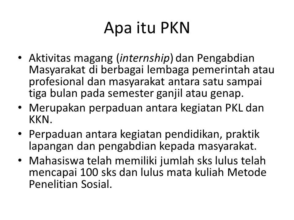 Apa itu PKN