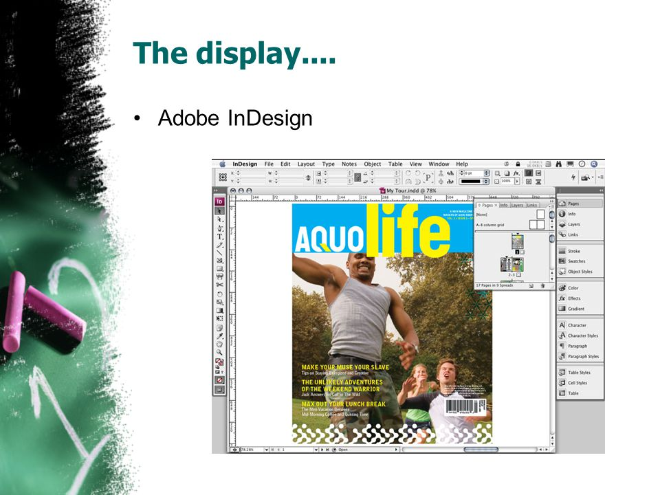 The display.... Adobe InDesign