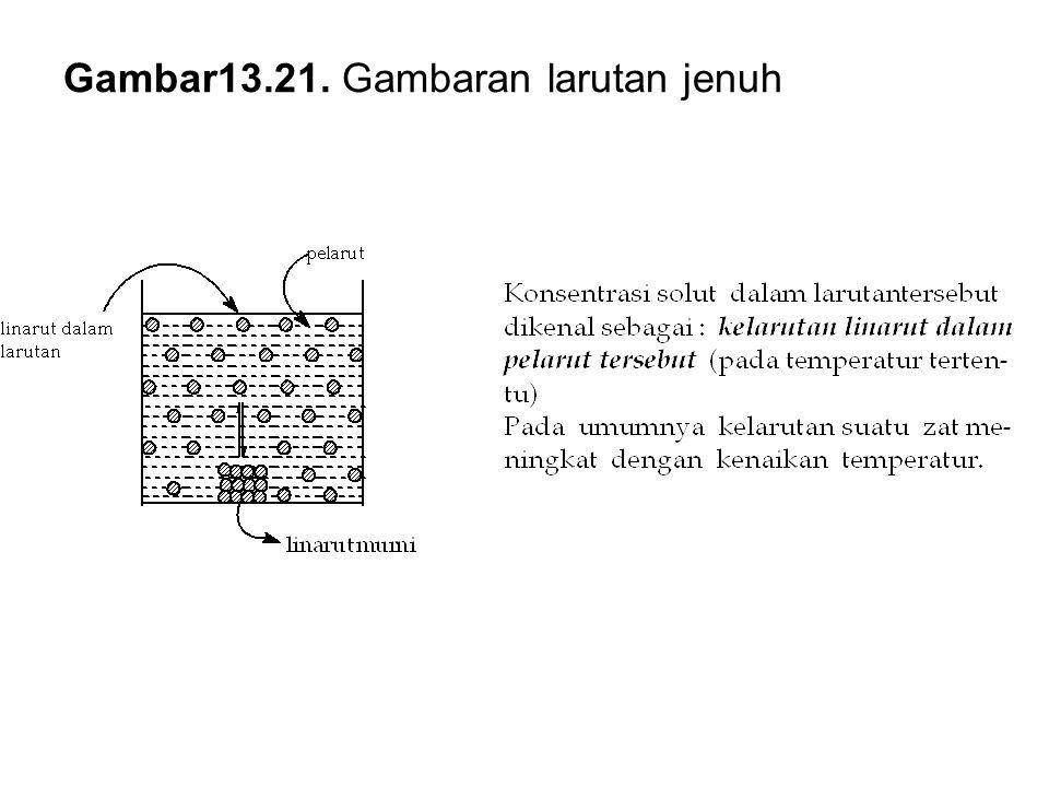 Gambar13.21. Gambaran larutan jenuh