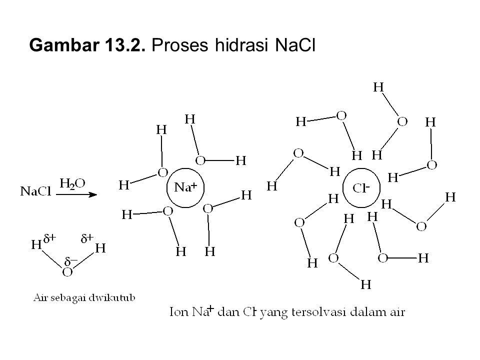 Gambar 13.2. Proses hidrasi NaCl