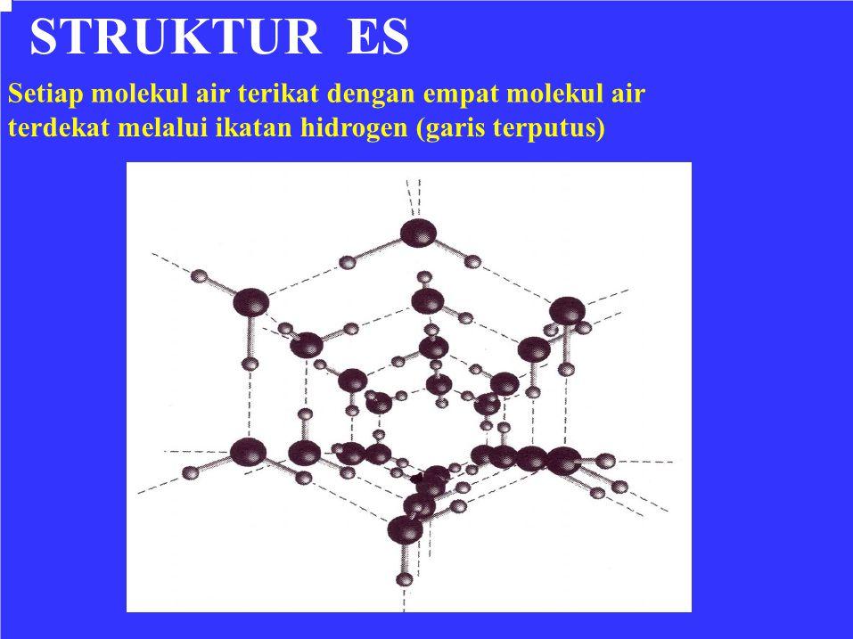 STRUKTUR ES Setiap molekul air terikat dengan empat molekul air