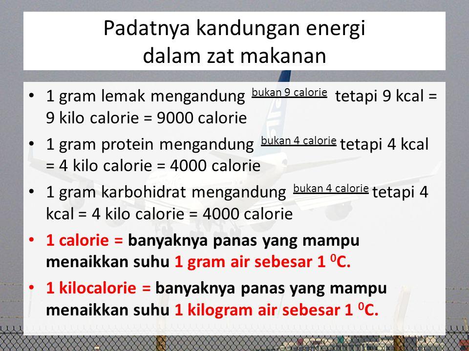 Padatnya kandungan energi dalam zat makanan