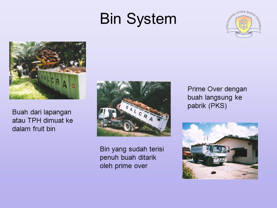 Bin System Prime Over dengan buah langsung ke pabrik (PKS)