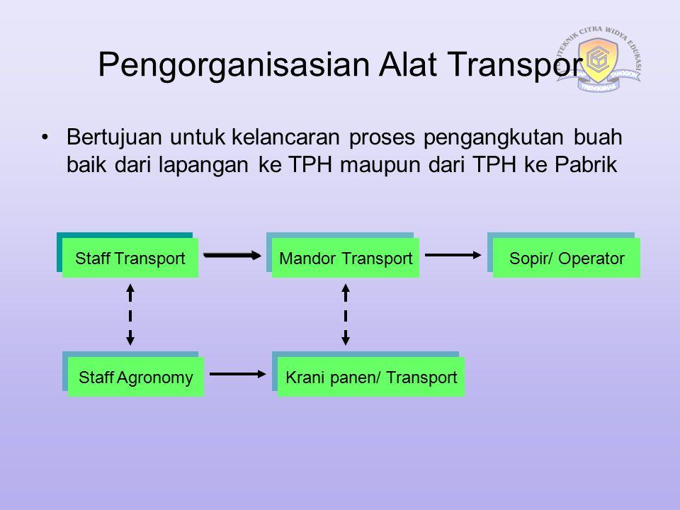 Pengorganisasian Alat Transpor