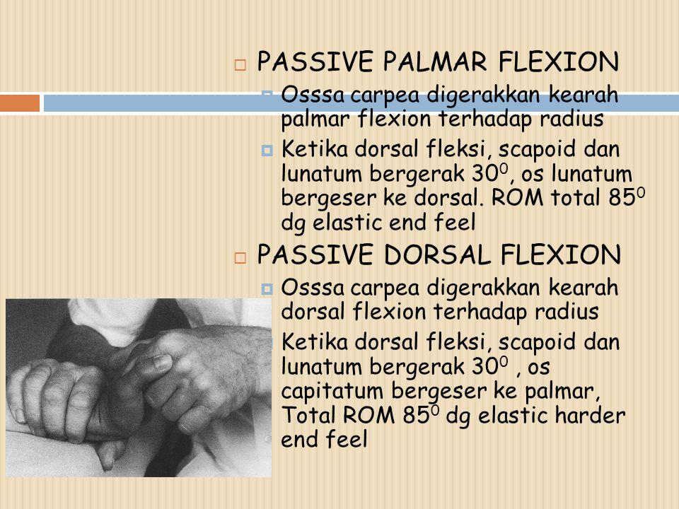 PASSIVE PALMAR FLEXION