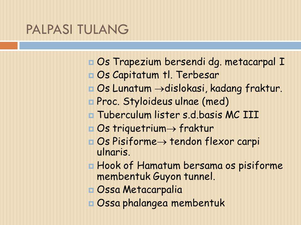 PALPASI TULANG Os Trapezium bersendi dg. metacarpal I