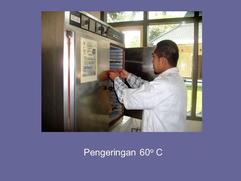 Pengeringan 60o C