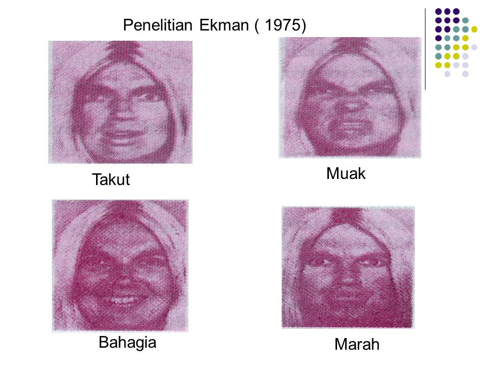 Penelitian Ekman ( 1975) Muak Takut Bahagia Marah