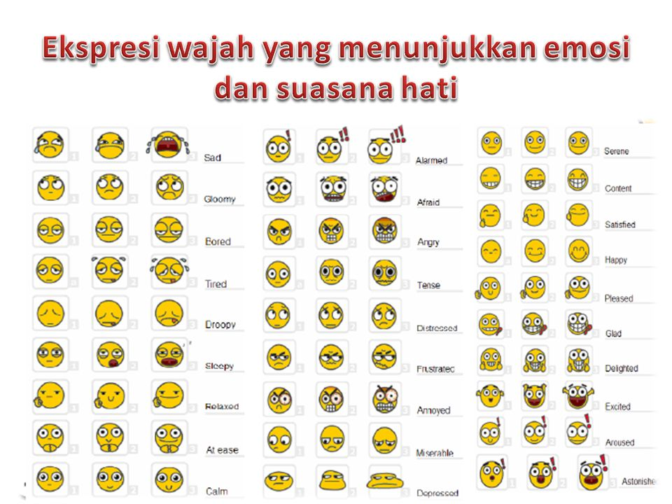Ekspresi wajah yang menunjukkan emosi dan suasana hati