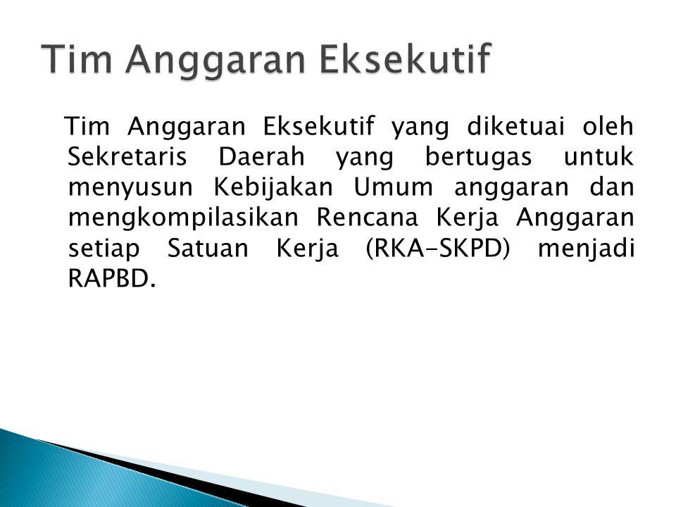 Tim Anggaran Eksekutif